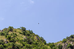 Berge bedeckt mit Vegetation Stockfoto
