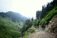 Berge bedeckten grünes Gras, schönen Weg, grüne Bäume und blauen bewölkten Himmel stockbild