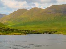 Berge in Connemara neben Killary-Fjord stockfotografie