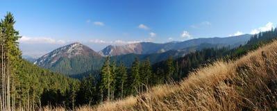 Berge, die Stufen wachsen Stockfotografie