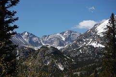 Berge durch die Bäume Lizenzfreie Stockbilder
