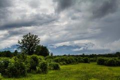 Berge durch die Wolken über dem Wald Lizenzfreie Stockfotos