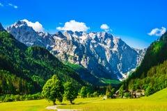 Berge durch Logar-Tal in den slowenisch Alpen stockbild