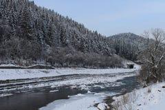 Berge, ein Gebirgsfluss im Winter lizenzfreie stockfotografie