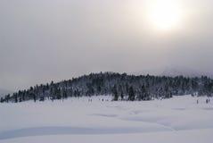 Berge. Ergaky. Sibirien. Lizenzfreie Stockfotos