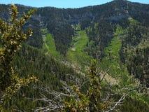 Berge für das einfache Klettern und die Erforschung lizenzfreie stockfotografie