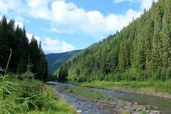 Berge Flussufer-Ukraine Karpaty Lizenzfreie Stockfotografie