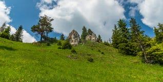 Berge Frühjahr Velka Fatra brüllen Hügel Zadna Ostra in Slowakei stockfotografie