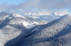 Berge, Holz und Schnee. Stockfoto