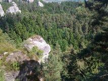 Berge im Holz Lizenzfreie Stockbilder