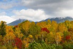 Berge im Nationalpark Daisetsuzan stockfotografie
