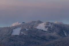Berge im Schnee mit orange Licht vom Sonnenaufgang oder vom susnet Stockbilder