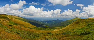 Berge im Sommer Stockbild
