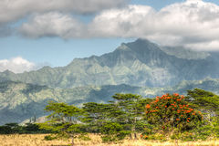 Berge Kauais, Hawaii Lizenzfreies Stockbild