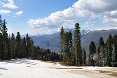 Berge Kaukasus Lizenzfreies Stockfoto