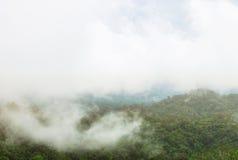 Berge mit Bäumen und Nebel Lizenzfreies Stockfoto