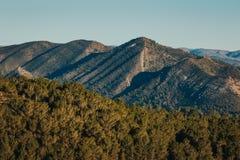 Berge mit Baumgrenze im Vordergrund in Spanien stockfotografie