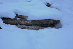 Berge - Natur Lizenzfreie Stockfotografie