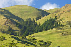 Berge Nordkalifornien Stockfotografie