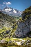 Berge Picos de Europa, Kantabrien (Spanien) lizenzfreie stockfotos