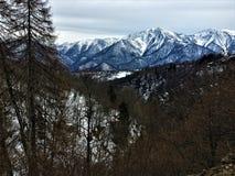 Berge, Schnee und Landschaft Stockfotos