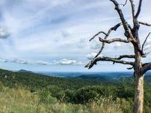 Berge shenandoah staatlichen Waldes und bloßer Baum Stockfotos