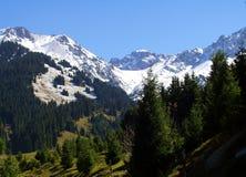 Berge am Skifahren Lizenzfreie Stockfotos