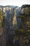Berge Tianzi Shan Lizenzfreies Stockfoto