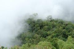 Berge umgeben durch Nebel Stockbild