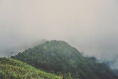 Berge umgeben durch Nebel Lizenzfreie Stockfotografie