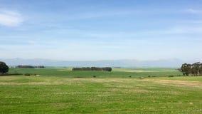 Berge und Ackerlande in Südafrika Stockbilder