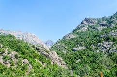 Berge und Bäume in Korsika Lizenzfreie Stockfotos
