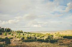 Berge und Feld Lizenzfreie Stockbilder
