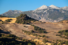 Berge und Felder in Andalusien Lizenzfreies Stockbild