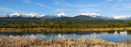 Berge und Flusspanorama Lizenzfreie Stockfotos