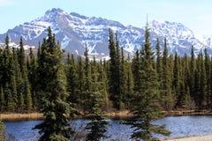 Berge und Teich lizenzfreie stockfotos