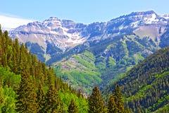 Berge und Wälder, die Tellurid, Colorado umgeben Stockfotos