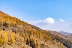 Berge und Wälder im Herbst stockfotos