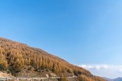 Berge und Wälder im Herbst lizenzfreies stockbild