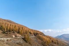 Berge und Wälder im Herbst stockfoto