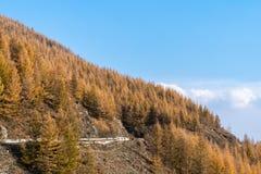 Berge und Wälder im Herbst lizenzfreie stockfotos