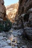 Berge und Wasser im Naturreservat Ein Gedi lizenzfreies stockfoto