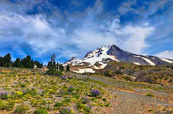 Berge und Wiese Lizenzfreies Stockfoto