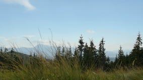 Berge und Wolken, Wind stock video footage