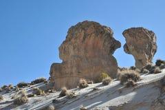 Berge von Bolivien stockfotos