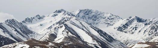 Berge von Denali Alaska Lizenzfreie Stockfotografie