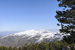 Berge von Gennargentu lizenzfreies stockfoto