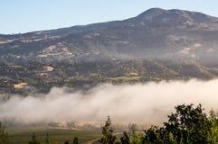 Berge von Weinanbaugebiet Sonoma Kalifornien Sonoma Stockfotografie