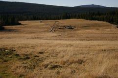 Berge, Wiesen, Sommer Lizenzfreie Stockbilder