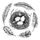 Übergeben Sie gezogene Vektorillustration - nisten Sie mit Ostereiern und Federn Stockfotografie